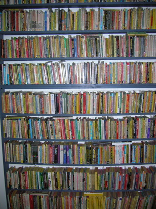 Shelf of Paperbacks
